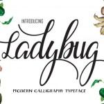 Ladybug Script Font Free