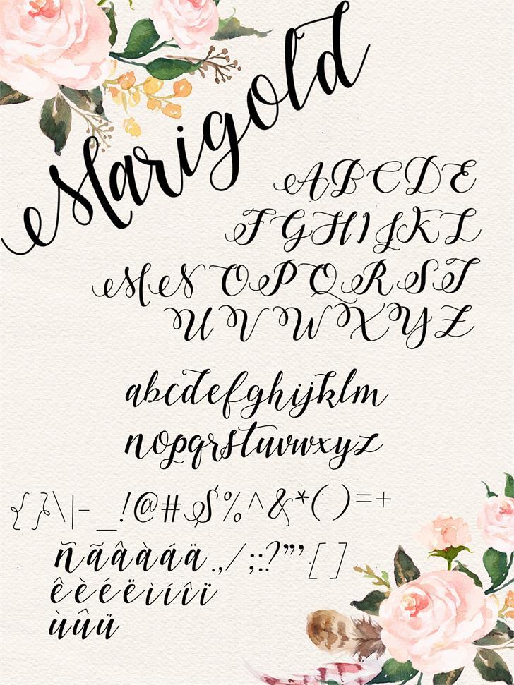 marigold-font-1