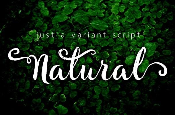 Natural Script Font Free