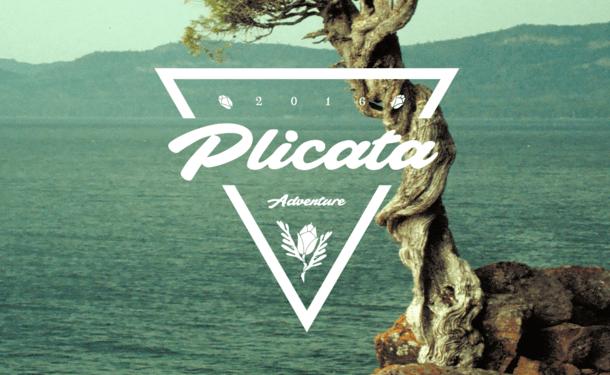 Plicata Font Free