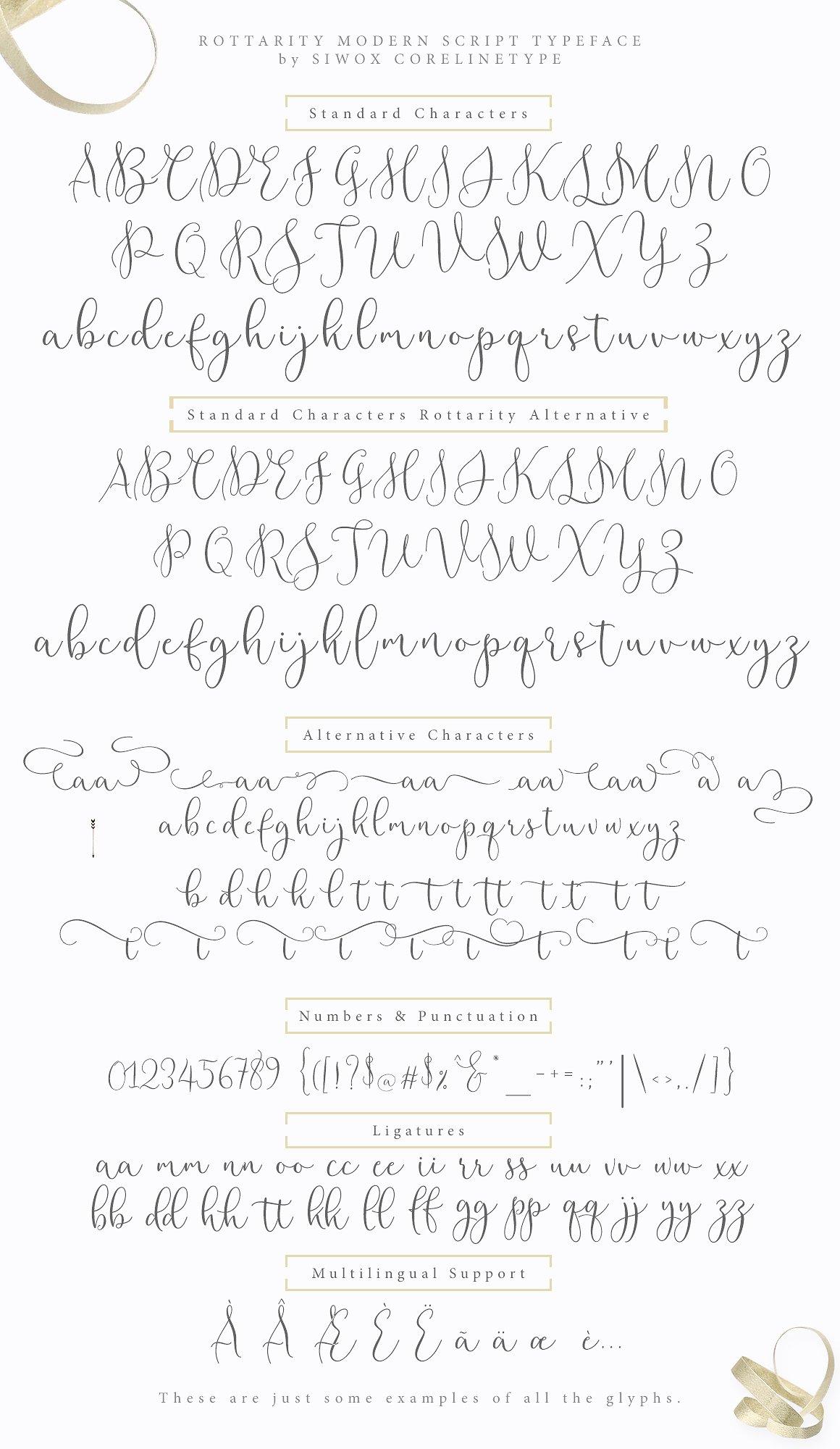rottarity-feminine-script-font-6