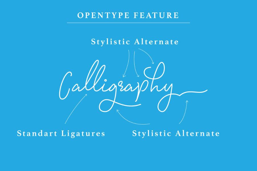 signatura-monoline-script-font-2