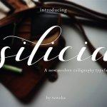 Silicia Script Font Free