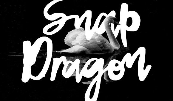 Snap Dragon Script Font Free