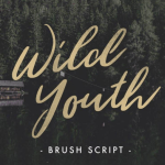 Wild Youth Font Free