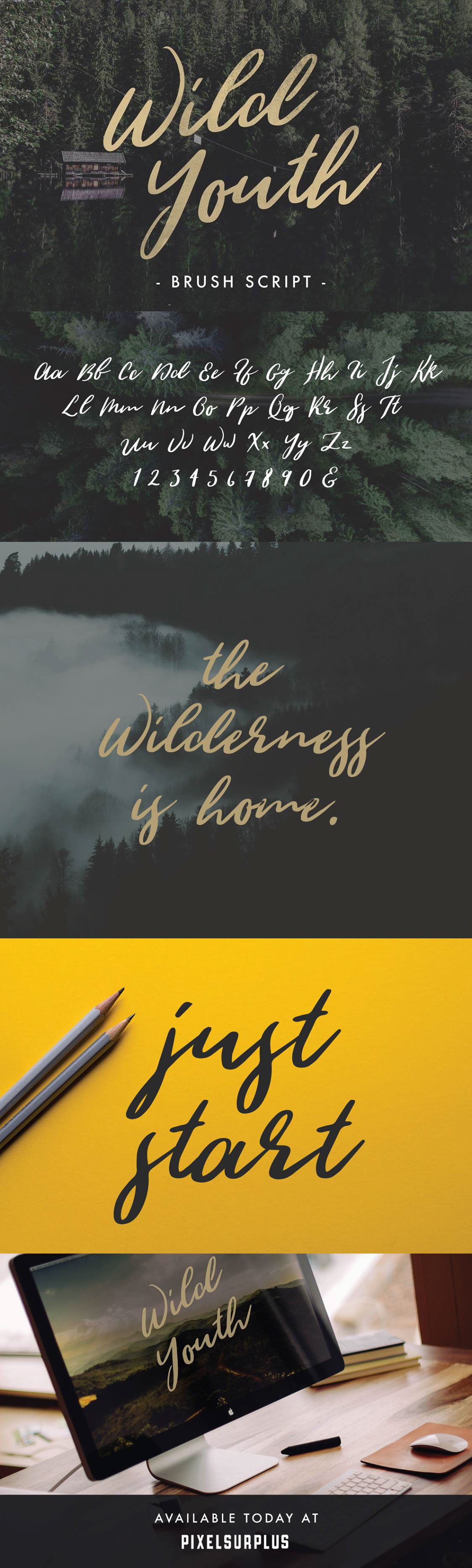 wild-youth-font