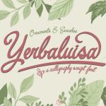 Yerbaluisa calligraphic script Font Free