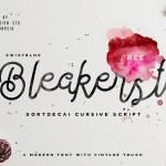 Bleakerst Script Font Free