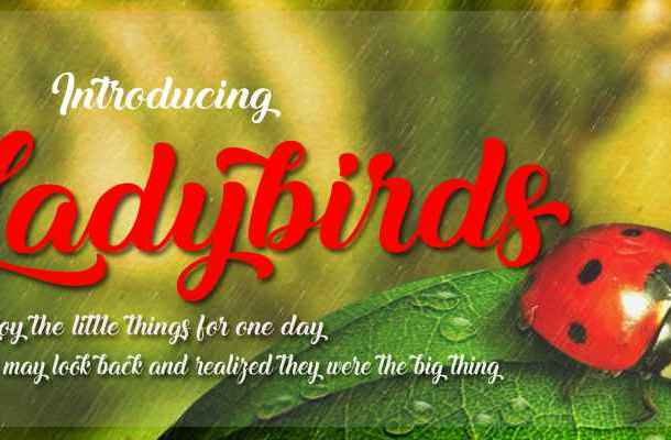 Ladybirds Font Free Download