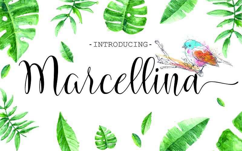 marcellina-script1