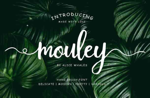 Mouley Script Font Free Download