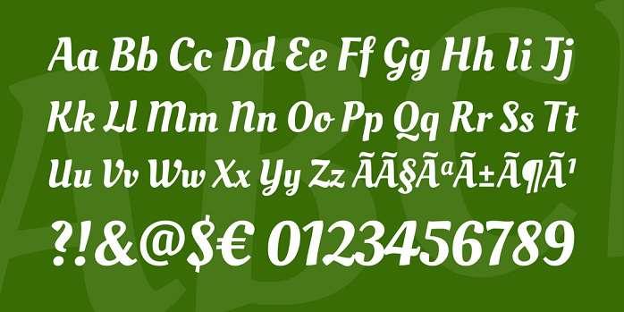 Oleo Script 1