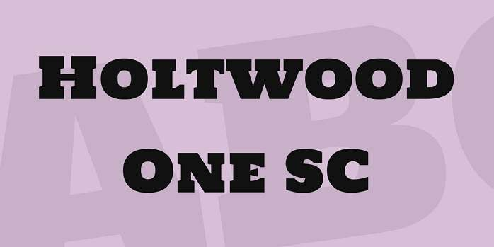 Holtwood One SC