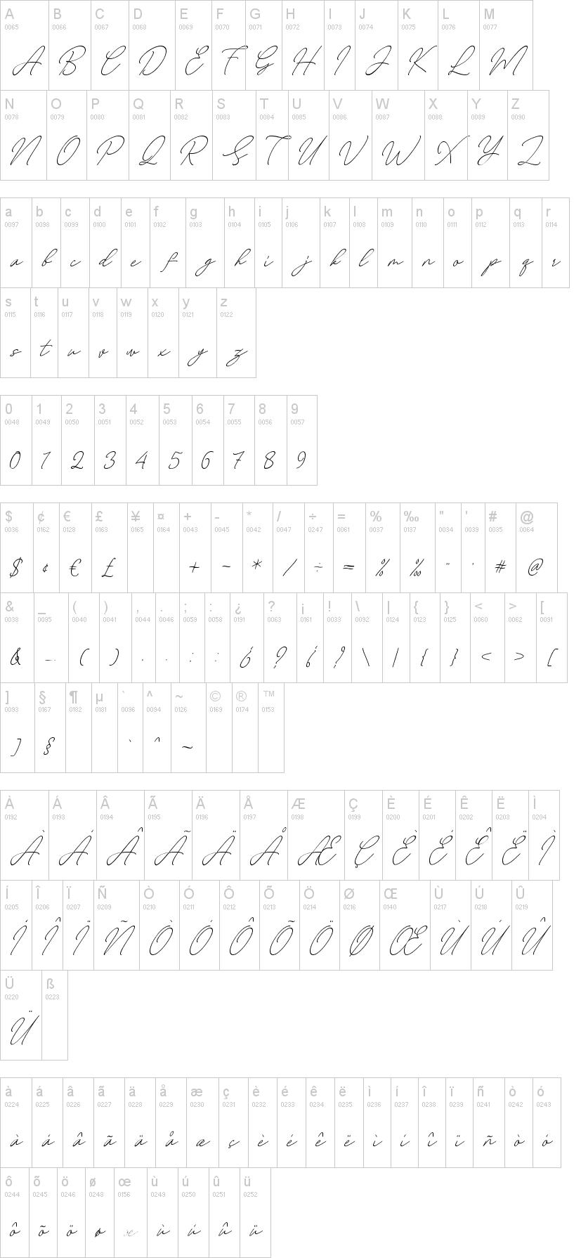 August Script Font-1