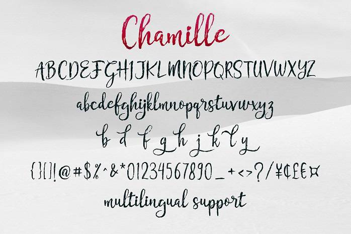 Chamille Font Duo-1