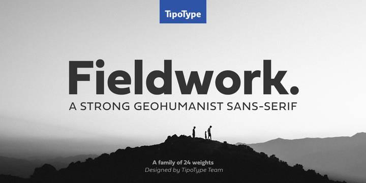 Fieldwork Font Family
