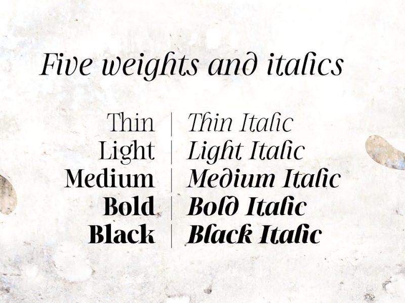 Sharpe Font Family-1