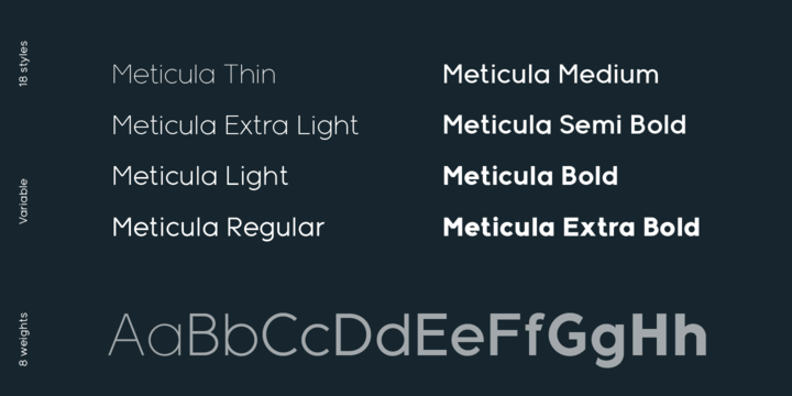 Meticula Font Family-2