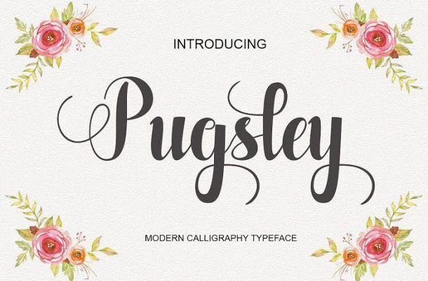 Pugsley Script Font