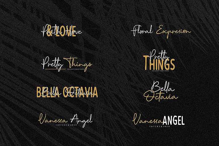 Reinata Script Font-2
