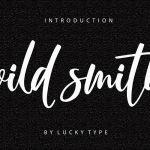 Wild Smith Modern Script Font