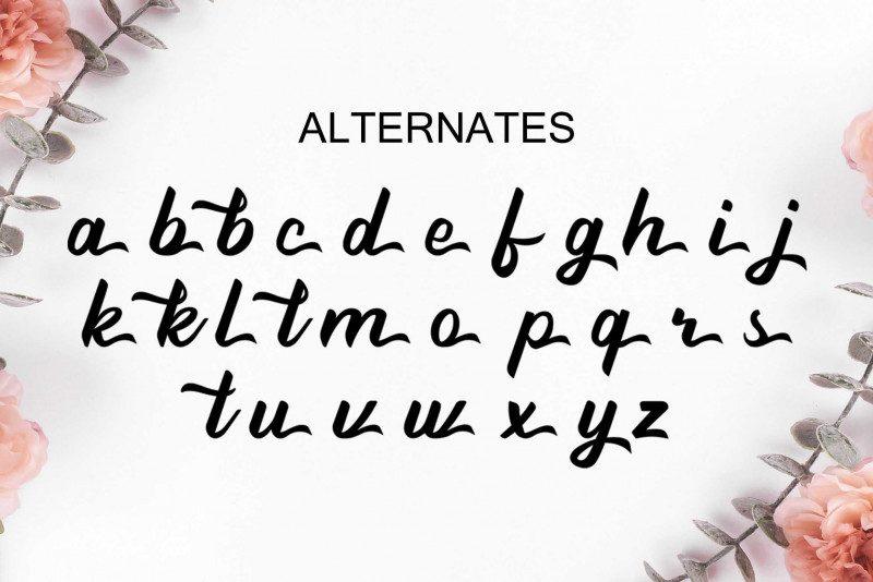 Beathy Handwritten Font-4