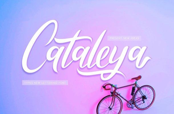 Cataleya Font