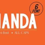 Handa Sans Font Family