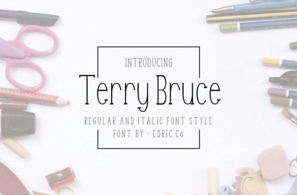 TerryBruce Sans Serif Font