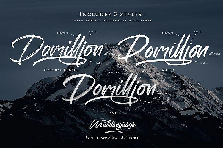 The Domillion Brush Font-3