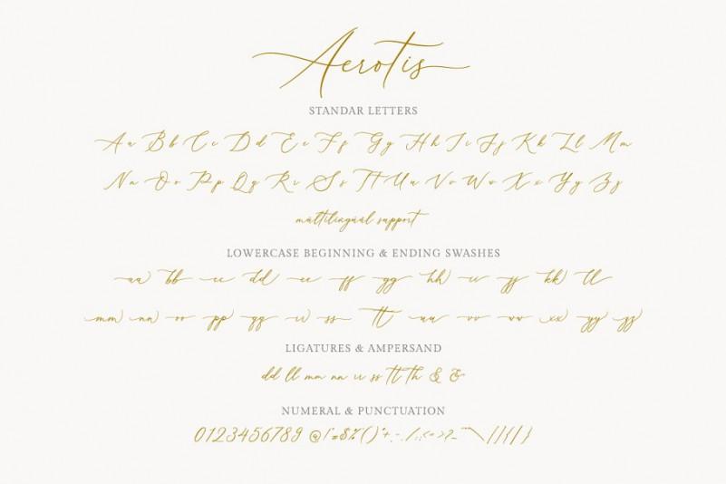 Aerotis Calligraphy Font-3