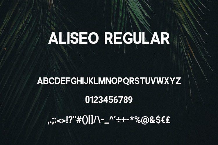 Aliseo Font Family-3