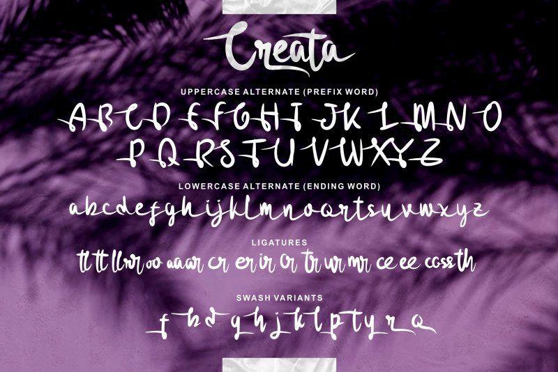 Creata Script Font-4