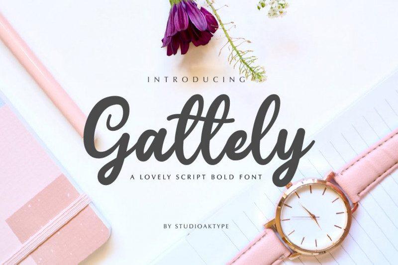 Gattely Script Font