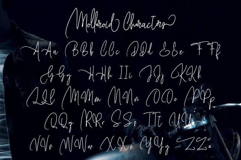 Mollaroid Signature Font-3