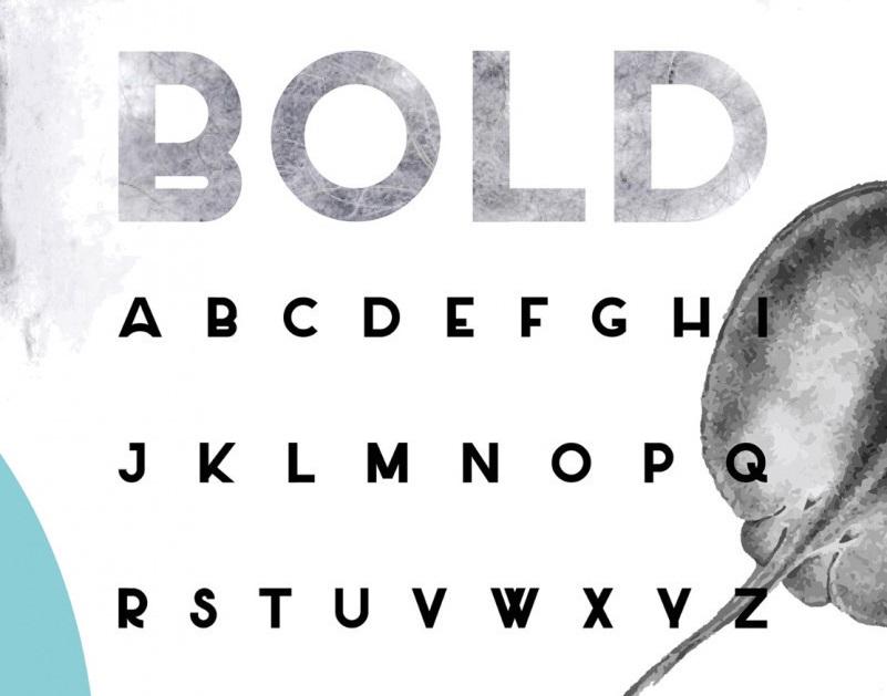 Salt Typeface-3