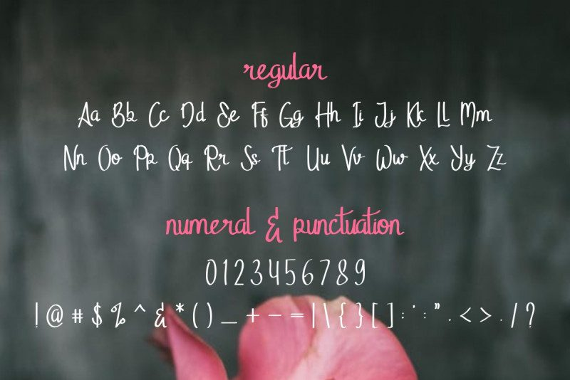 Stella Alpina Script Font-2