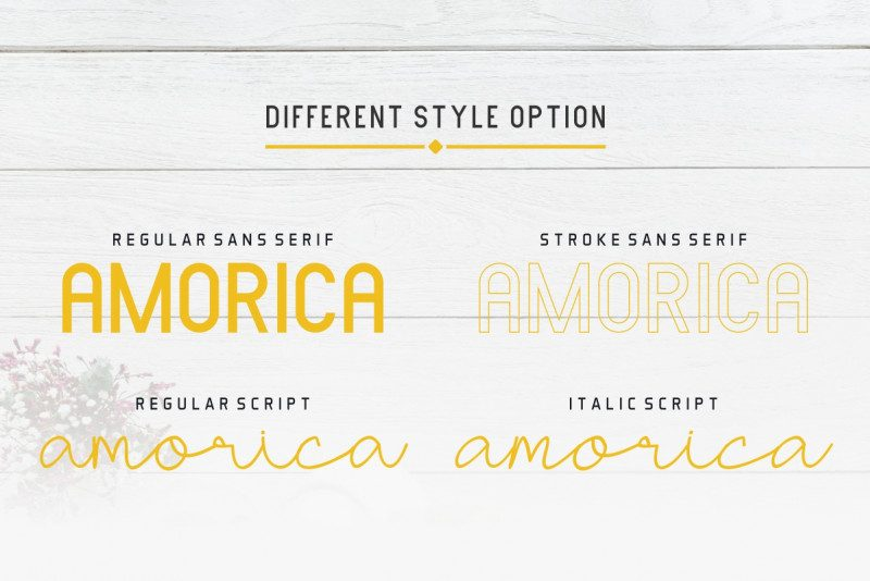 AMORICA Font Duo-2