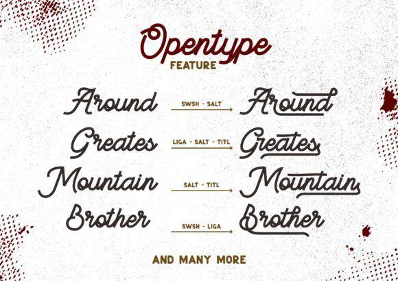 BeeQueen Script Font-3