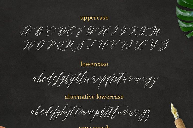 Fitri Script Font-3
