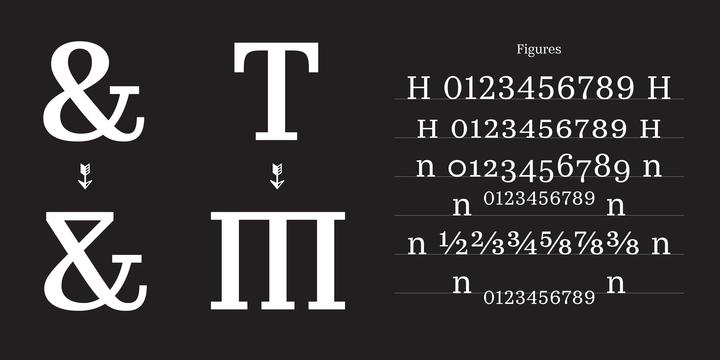 Kazimir Text Font Family-2