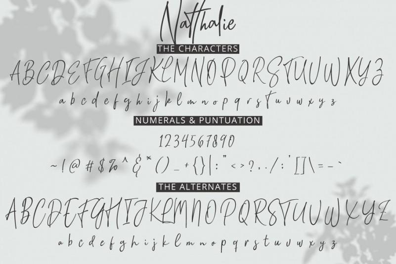 Natthalie Signature Font-3
