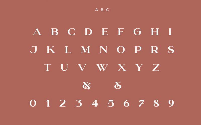 Understock Font Family-3