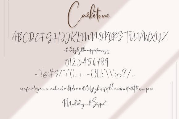 Carletone Signature Font-2