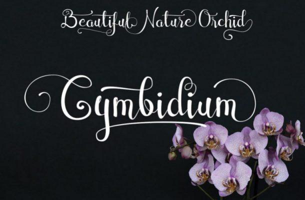Cymbidium Calligraphy Font