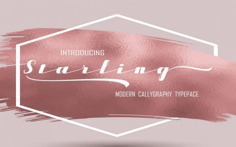 Starling Calligraphy Font