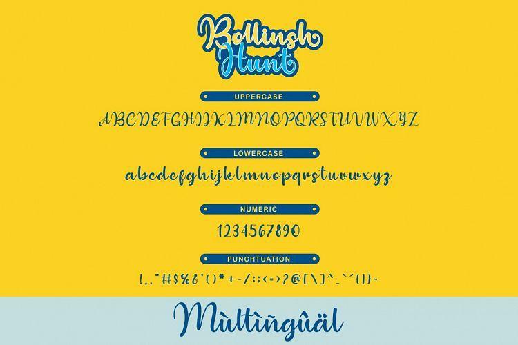 Bollinsh Hunt Script Font-3