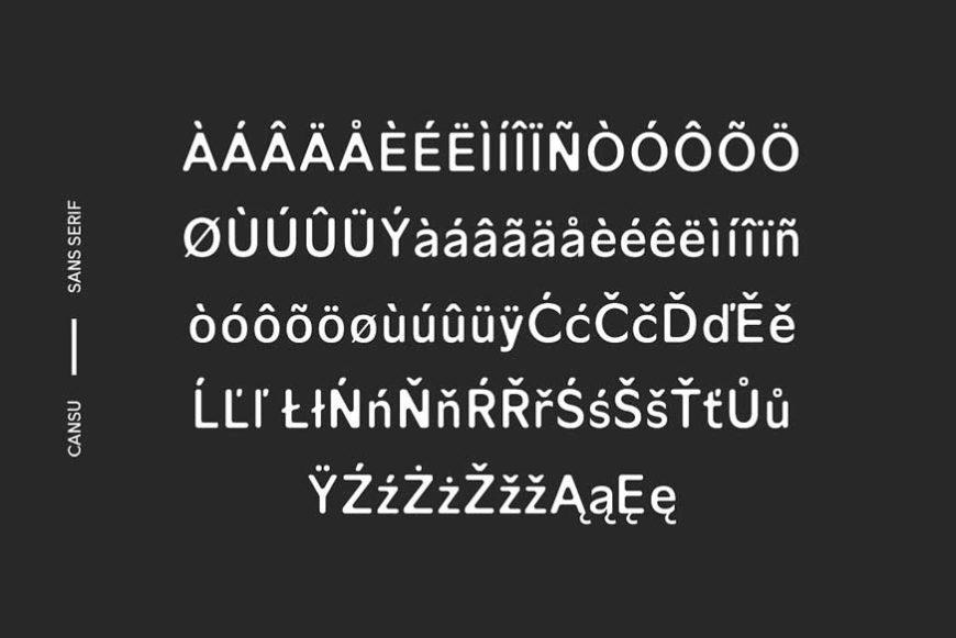 Cansu Sans Serif Font Family-4