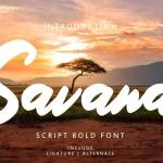 Savana Script Bold Font