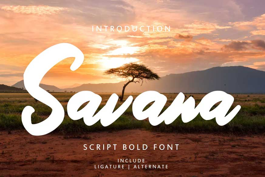 Savana Script Bold Font-1